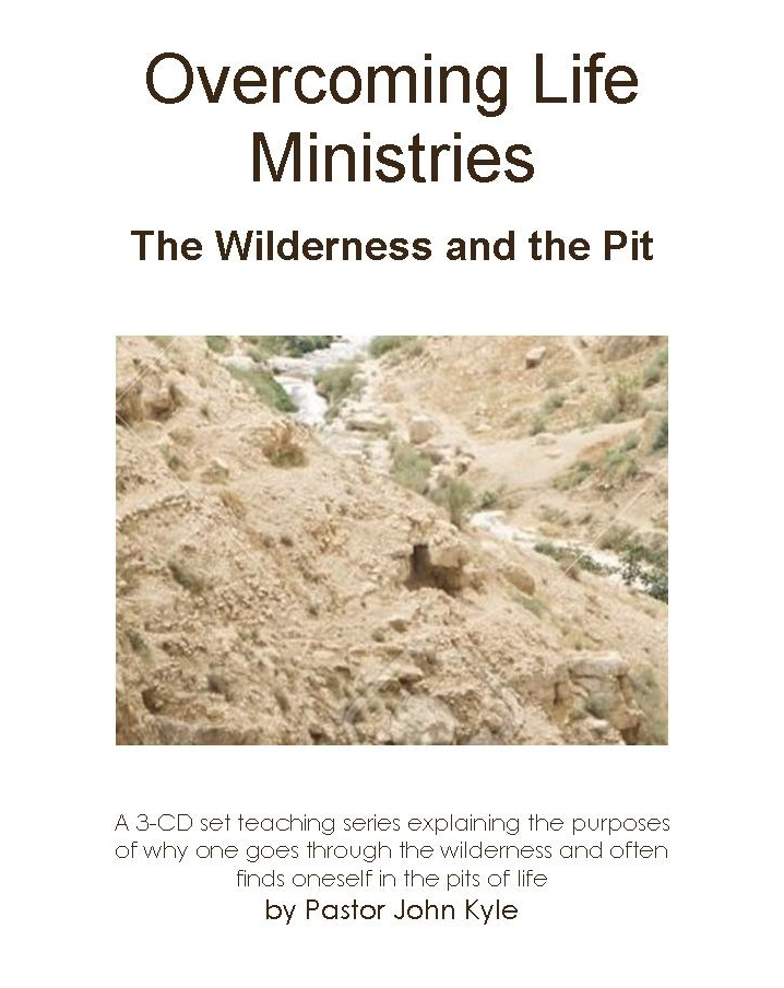 The Wilderness and the Pit, edited for the bookstore.jpg
